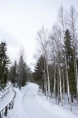 雪景色 フィンランド ロバニエミ
