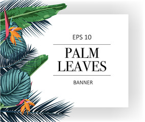 exotic pattern with palm leaves.