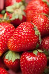 Basket of fresh strawberry harvest, bio dessert delicious.