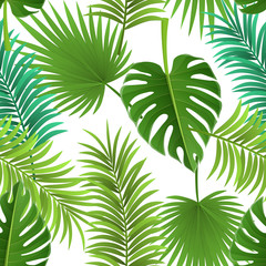 Seamless palm leaf pattern with different species. Vector illustration for tropical and summer background design