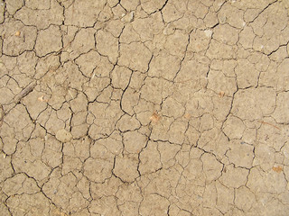 image of dried land