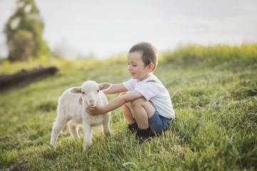 cute boy with lamb