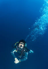 Underwater view of diver at the Tubbataha Reefs Natural Park, Cagayancillo, Palawan, Philippines