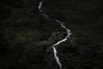 Dark forest with waterfall on the side of a mountain in Norway