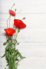 Poster Poppy Red poppy flowers over white rustic wooden surface.