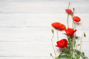 Spoed Fotobehang Klaprozen Red poppy flowers on white rustic wooden surface.