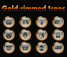 veterinary clinic gold-rimmed vector icons with black background
