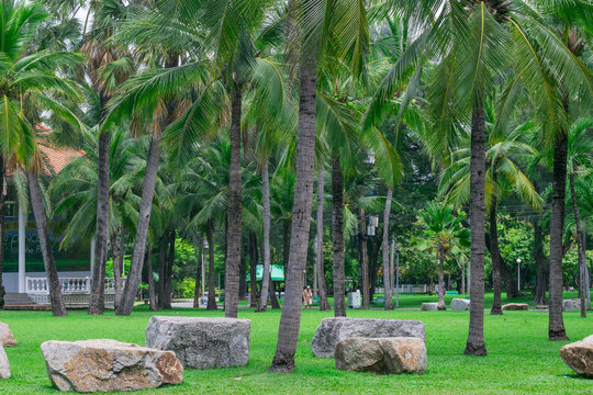 Beautiful public park with green grass field and stone.