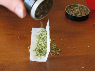 Man using grinder to fill rolling paper with prescription medicinal marijuana, the strain of marijuana is Green Crack