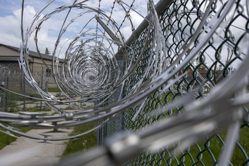 Razor wire on metal mesh fence
