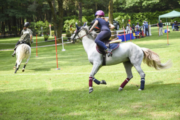 Papiers peints Equitation mounted games