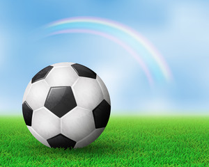 Realistic soccer ball on field from side view. Rainbow behind. EPS 10