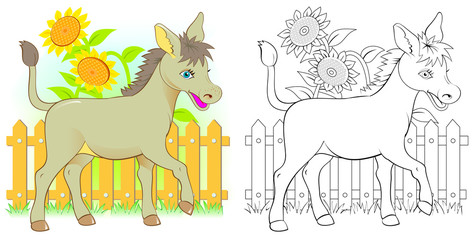 Colorful and black and white pattern for coloring. Illustration of cute donkey. Worksheet for children and adults. Vector image.