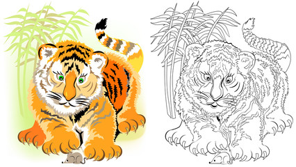 Colorful and black and white pattern for coloring. Illustration of cute tiger. Worksheet for children and adults. Vector image.