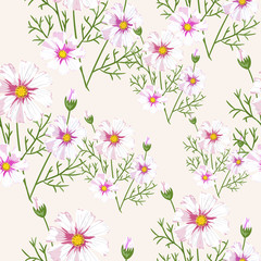 Seamless pattern with wildflowers on white background. Sunny clor flower vector field blossom.