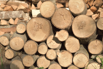 Wood pile near country house