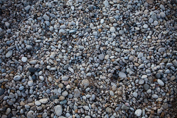 Small beach light pebble rocks floor. Different stones background texture in nature. Outdoors. Grid gravel with several shapes. Natural formations. Gray colored