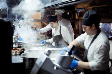 Group of chefs working in the kitchen