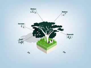illustration info graphic design concept of benefits of tree in square meter area