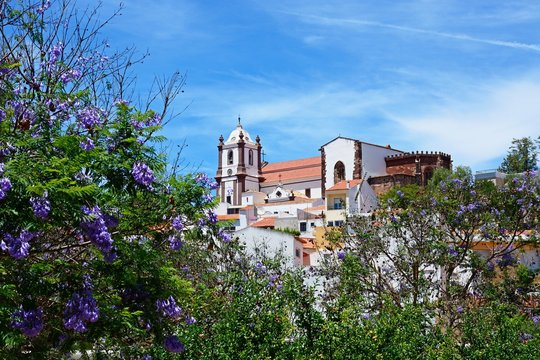 View over the town rooftops towards the Gothic cathedral (Igreja da Misericordia) with Jacaranda trees in the foreground, Silves, Portugal.