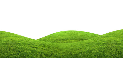 Photo sur Aluminium Colline Green grass texture background isolated on white background with clipping path.