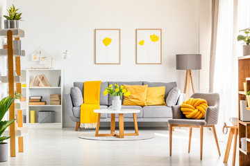 Yellow knot pillow on grey armchair in modern living room interior with posters above couch. Real photo Wall mural