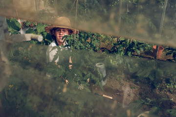 Boy working in greenhouse