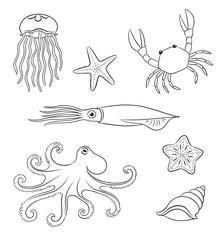 Sea animals in contours