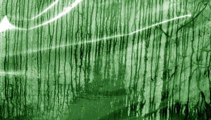 Condensation drops texture in green tone.