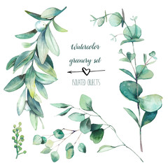 Watercolor snowberry plant and eucalyptus branches with round leaves set. Hand painted floral clip art: objects isolated on white background.