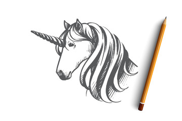 Unicorn concept. Hand drawn isolated vector.