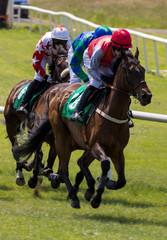 Horses and jockeys racing on the track