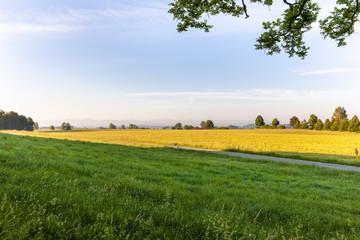 Fotoväggar - Landschaft