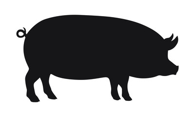 Sign pig. Isolated black silhouette pig on white background. Vector illustration
