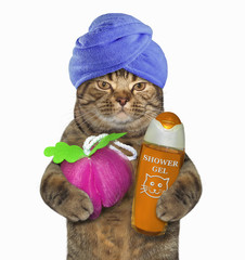 The cat with a blue towel around his holds a sponge for shower and a orange bottle of gel. White background.