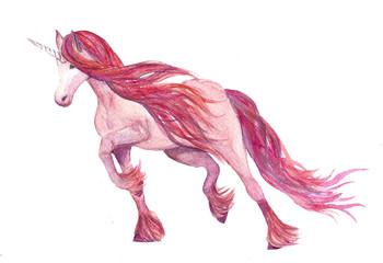 Nice rose magic unicorn without backgraund