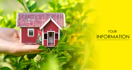 Small house in hand sun leaves plant green nature pattern on blurred background