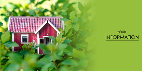 Small house sun leaves plant green nature pattern on blurred background