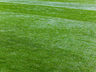 Green football field. Grass background