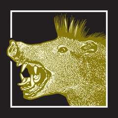 Screaming yellow boar in graphic engraving style isolated on black background.