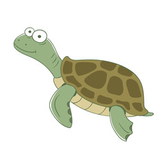 Colorful turtle on white background. Vector illustration.