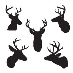 Deer heads - black silhouettes isolated on white background. Vector image of stags deer head in outline style, graphic illustration portrait of cute horned animal. Symbol of hunting trophy.