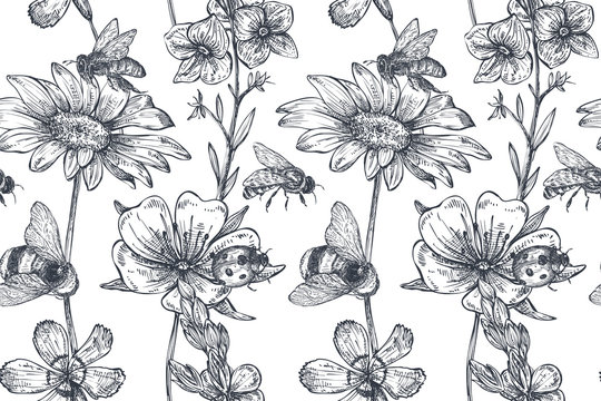 Vector seamless pattern with hand drawn chamomile, wildflowers, herbs, bee