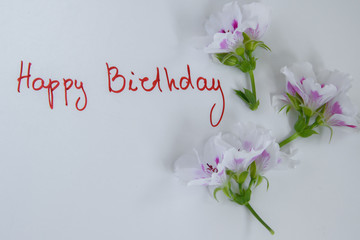 Happy birthday greeting card with fresh flowers on white background, space for text