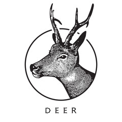 Deer head - black drawing isolated on white background.