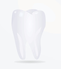 Tooth. vector illustration