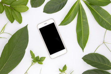 Black screen smartphone and green summer leaves on white background. User interface of mobile phone app mockup