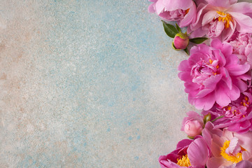 Background with pink peonies for text congratulations, invitations