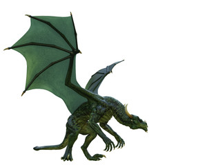 Wall Murals Dragons green dragon in a white background