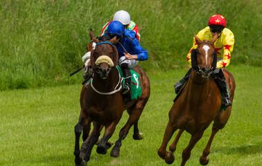 Lead race horses and jockeys racing down  the track